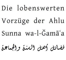 Gehöre ich zu einer Sekte ? Und wie erkenne ich die wahren Vertreter des Islam?
